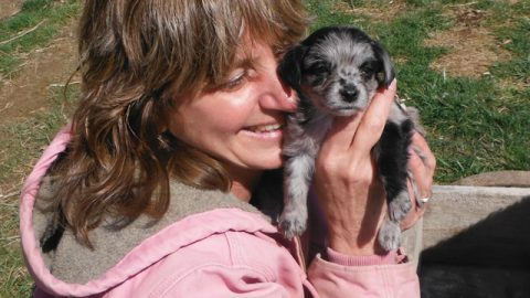 Video – Playing with PolkaDot's Puppies!