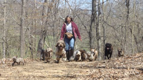 The Dogs & I are Enjoying Spring!